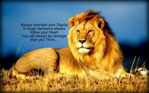 Lion Message